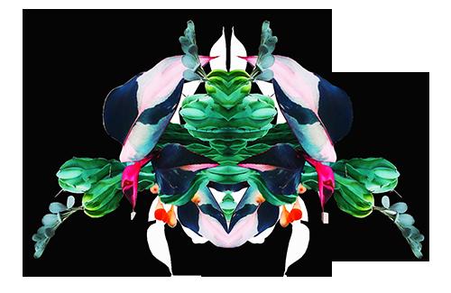 creature-NaomiNeijssen-expo